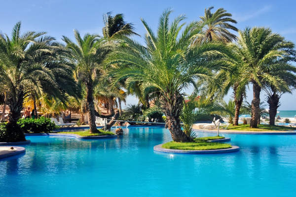 Coche Paradise